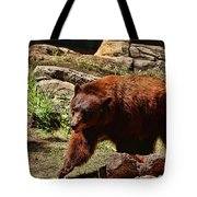 Bear Pacing Tote Bag
