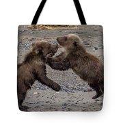 Bear Play Tote Bag