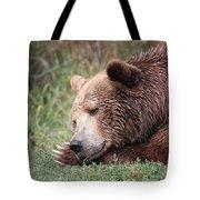 Bear Sleeping Tote Bag