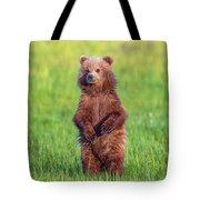Bear Standing Tall Tote Bag