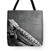 Bearded Dragon Tote Bag