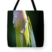 Bearded Iris Bud Tote Bag
