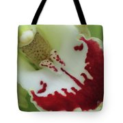Bearded Tongue Tote Bag