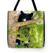 Bearlaxin Tote Bag