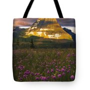 Bears And Gumdrops Tote Bag