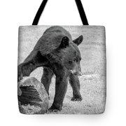 Bear's Log Stash Of Treats - Black And White Tote Bag
