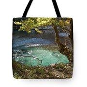 Beatiful Morning Tote Bag