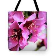 Beauties In The Rain Tote Bag