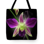 Beauties Tote Bag
