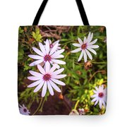 Beautiful African White Daisies Tote Bag