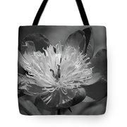 Beautiful Anyway Tote Bag