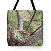 Beautiful Baby's  Tote Bag