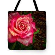 Beautiful Bicolor Rose Tote Bag