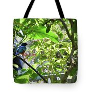 Beautiful Bird Perched In A Tree Tote Bag