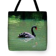 Beautiful Black Swan  Tote Bag