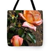 Beautiful Bloom Of The Rose Atlantic Star Tote Bag