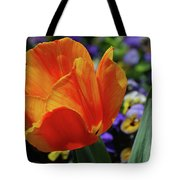 Beautiful Blooming Orange And Red Tulip Flower Blossom Tote Bag