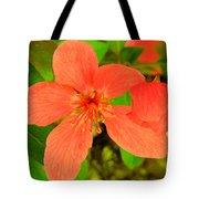 Beautiful Blossom Tote Bag