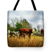 Beautiful Bovine 1 Tote Bag