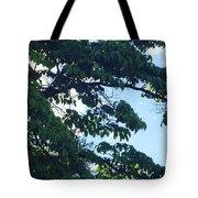 Beautiful Breezy Sky Tote Bag