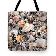Beautiful Broken Shells Tote Bag