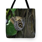 Beautiful Brown Morpho Butterfly In A Lush Garden  Tote Bag