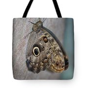 Beautiful Brown Morpho Butterfly Resting In A Butterfly Garden  Tote Bag