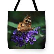 Beautiful Buckeye Tote Bag