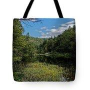 Beautiful Clear Creek Tote Bag