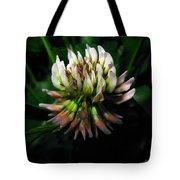 Beautiful Clover Blossom Tote Bag
