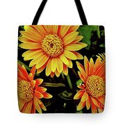 Beautiful Daisies Tote Bag