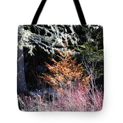 Beautiful Dead Tote Bag