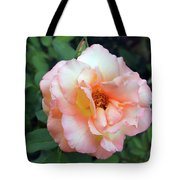 Beautiful Delicate Pink Rose On Green Leaves Background. Tote Bag