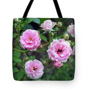 Beautiful Delicate Pink Roses On Green Leaves Background. Tote Bag