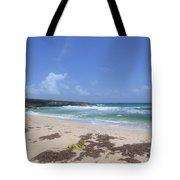 Beautiful Deserted Boca Keto Beach In Aruba Tote Bag