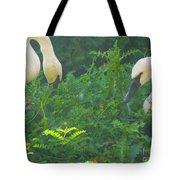 Beautiful Duo Tote Bag