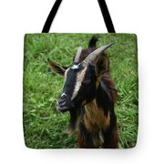 Beautiful Face Of A Billy Goat With Tan And Black Silky Fur Tote Bag