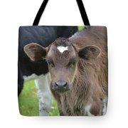 Beautiful Face Of A Brown Calf Tote Bag