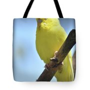 Beautiful Face Of A Yellow Budgie Bird Tote Bag
