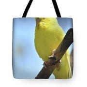 Beautiful Face Of A Yellow Budgie Bird Tote Bag
