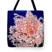 Beautiful Fan Coral Tote Bag