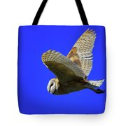 Beautiful Flight Tote Bag
