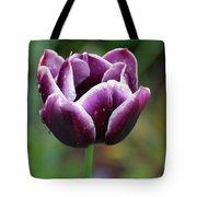 Beautiful Flowering Purple Tulip Flower Blossom In Spring Tote Bag