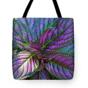 Beautiful Foliage  Tote Bag