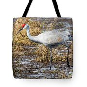 Beautiful Day For A Walk -sandhill Crane   Tote Bag