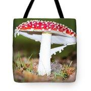 Beautiful Fungus Tote Bag