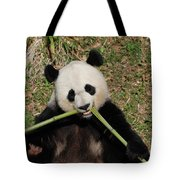 Beautiful Giant Panda Eating Bamboo From The Center Tote Bag