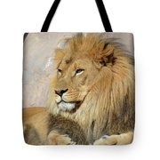 Beautiful Golden African Lion Relaxing In The Sunshine Tote Bag