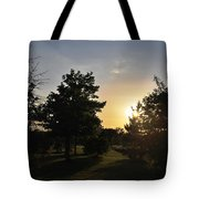 Beautiful Greenery Park In The Afternoon  Tote Bag