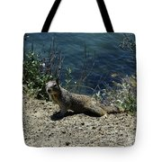 Beautiful Ground Squirrel Standing At The Edge Of The Coast Tote Bag